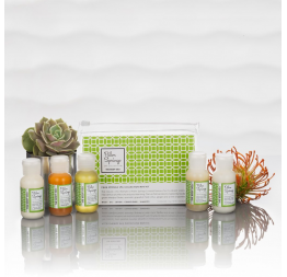 """PALM SPRINGS"" trousse formats voyage: The Body Deli"