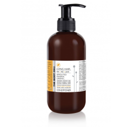 """LIVING HAIR "" conditioner: The Body Deli"